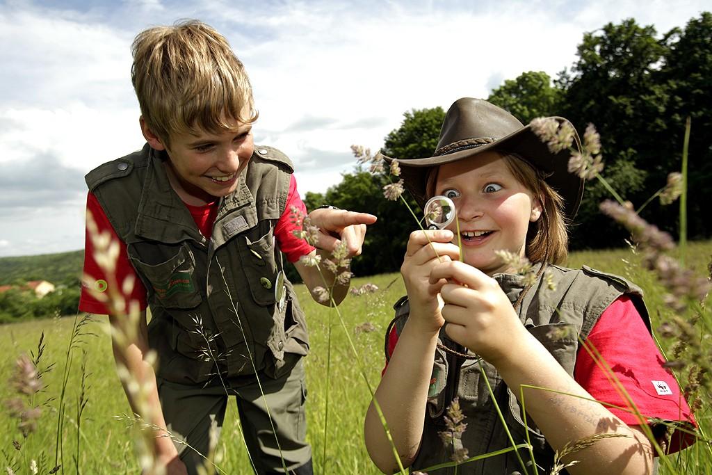 Junior Ranger erforschen den Nationalpark Hainich. (c) Arnold Morascher