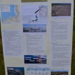 Plakat Wattenmeer